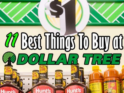 11 Best Things at Dollar Tree