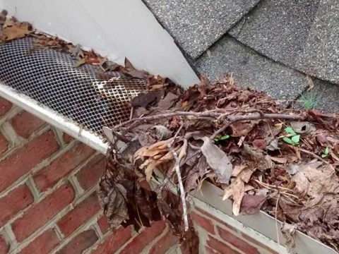 DIY gutter guard featured