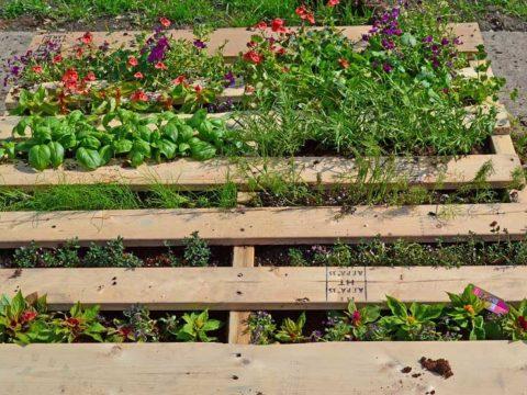 DIY Garden Pallet
